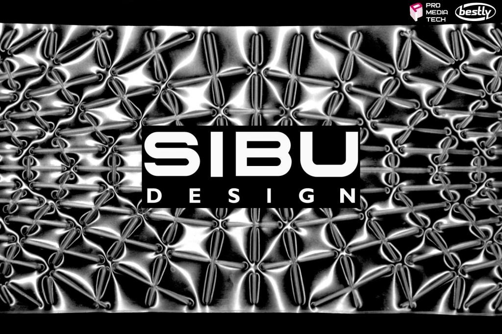 Семинар компании SIBU